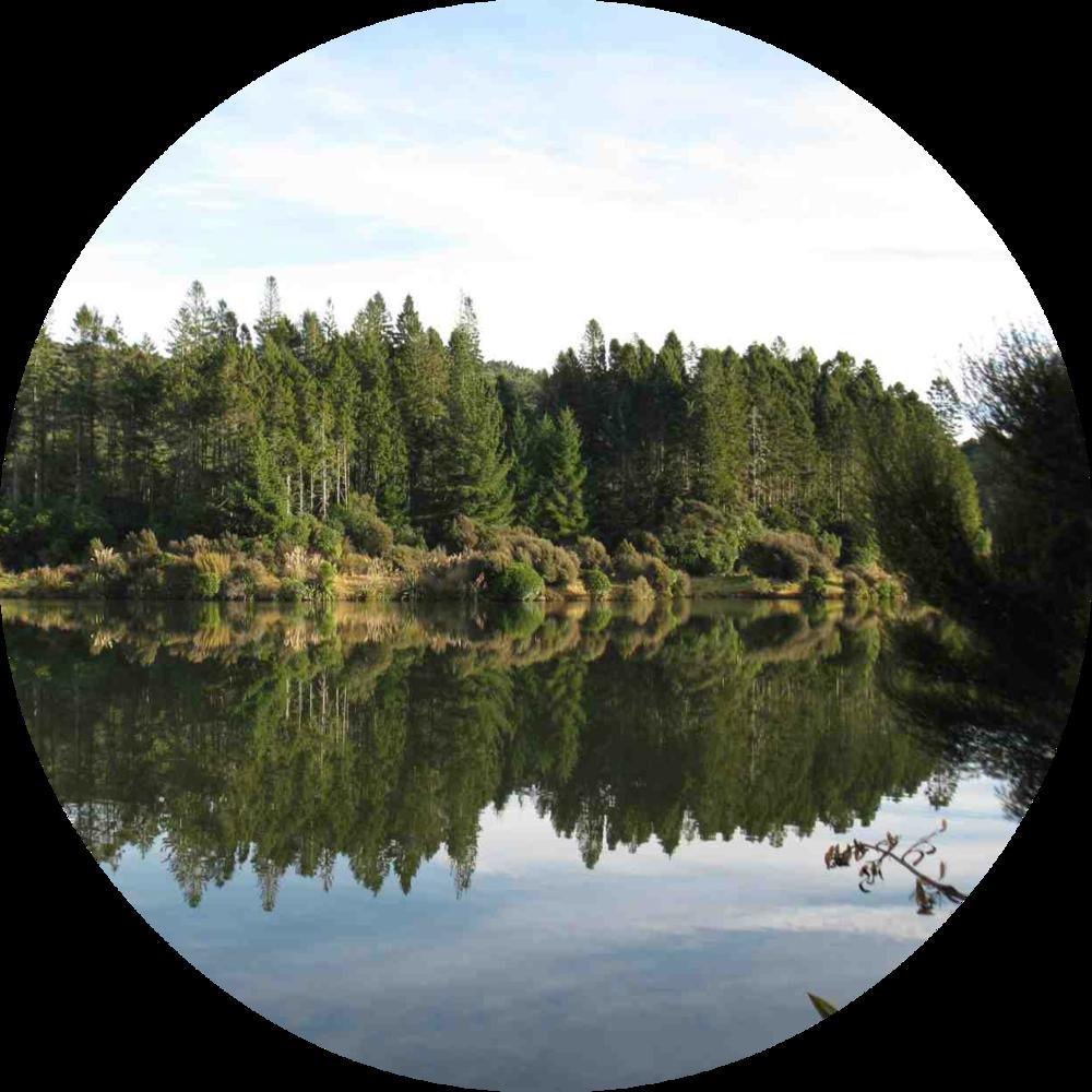 Sullivans-Dam.png