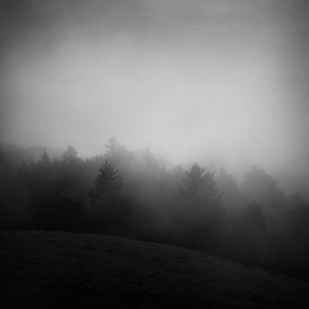 Watters_Holga_Mt Tam--_0066-1 .jpg