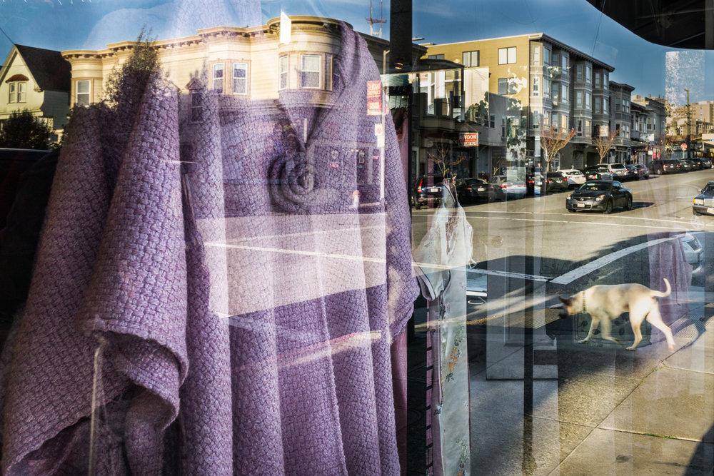 Marsha Guggenheim, My Colorful Neighborhood