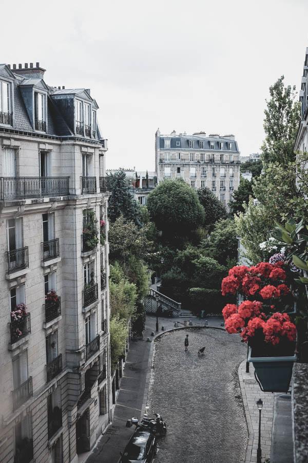 Montmartras ir geranijos.    Montmartre and geranium.