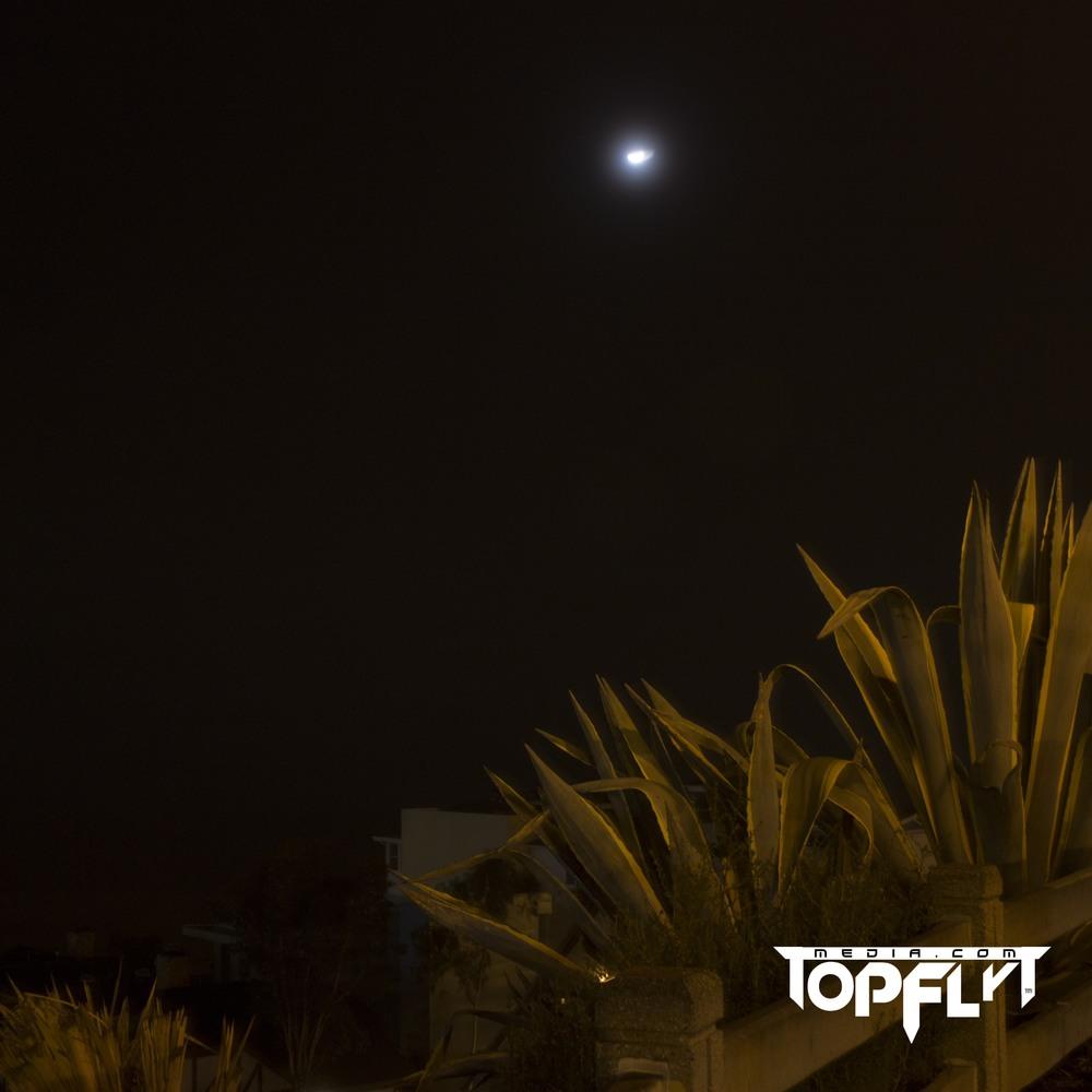 LA Fog 01-17-16_22.jpg
