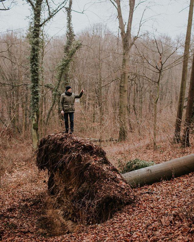 Maciej 😍 Chodziliśmy po lesie zbierając inspiracje, biorąc oddech 🌿❤️ #ekipafireinthewoods #mac #onepercenters #forestpeople #peopleoftheforest #intheforest #fallentree #orkanksawery #poland #polishwinter #polska #zima #fireinthewoods #kamilapiech #daretobewild