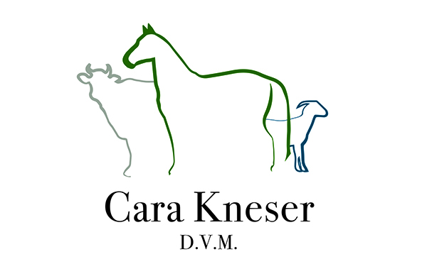 Kneser Veterinary