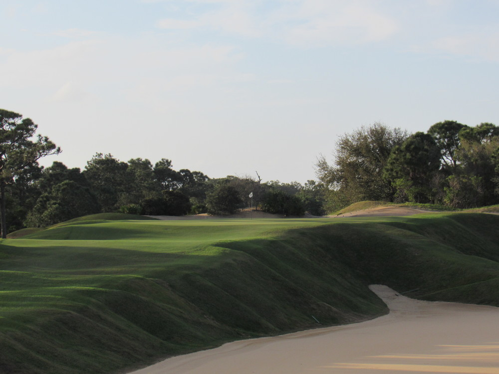 The signature 16th hole at Loblolly a tough par 3 over a giant bunker.