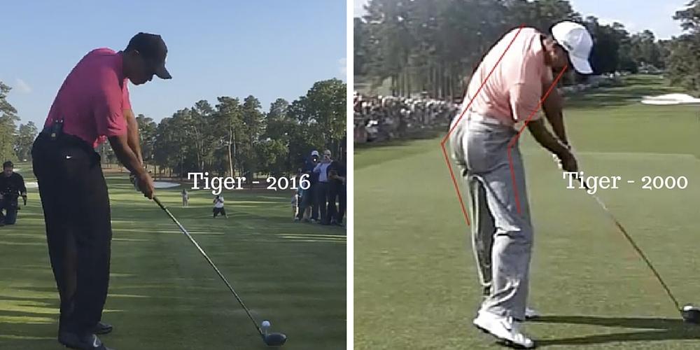 Tiger - 2016.jpg