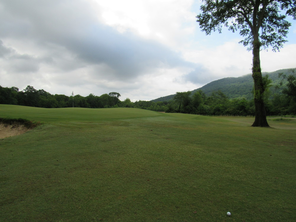 3rd green from left.jpg