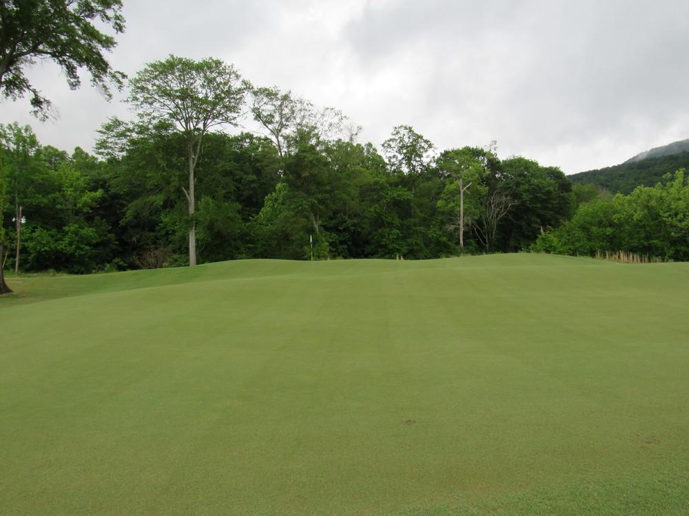 3rd green.jpg