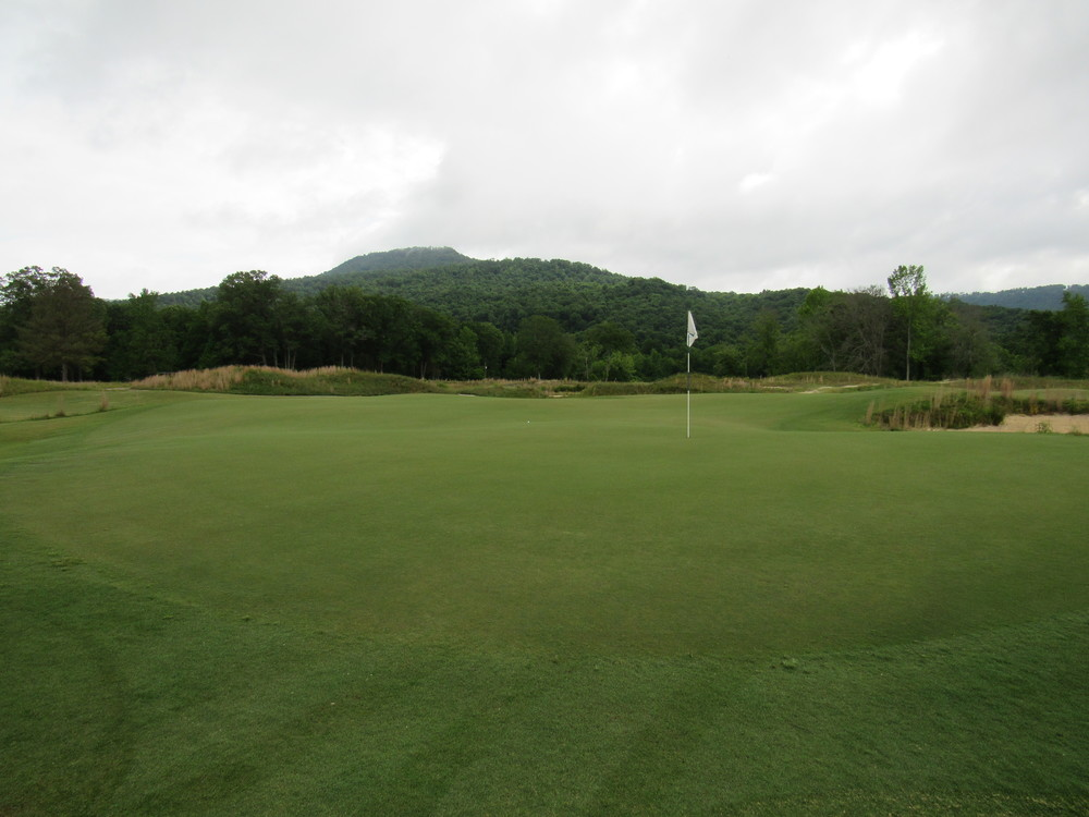 back of 4th green.jpg