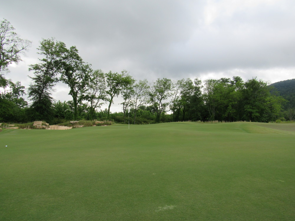 6th green from below.jpg