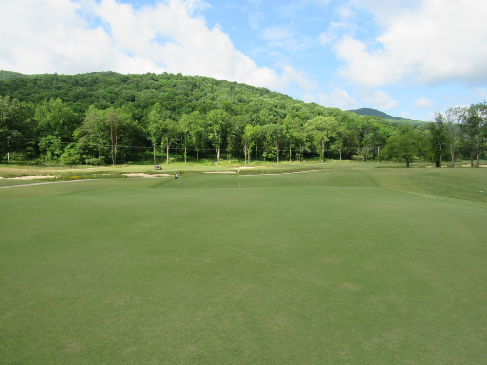 left side of 8th green.jpg