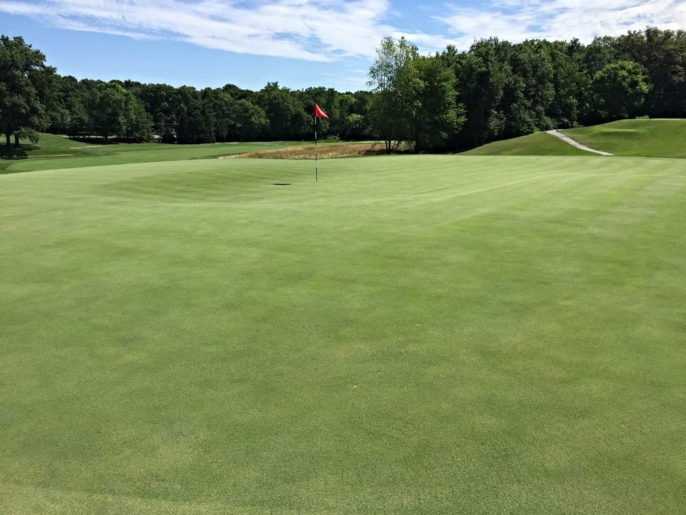 St. Louis C.C.'s 7th green that has a thumbprint feature. Photo Credit: Kyle Truax @TheTruArchitect