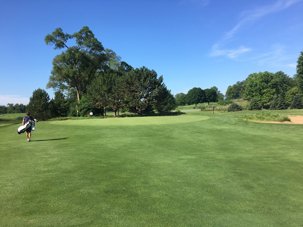 Considerable work needs to be done expanding the green to its original size and renovating the bunkering.
