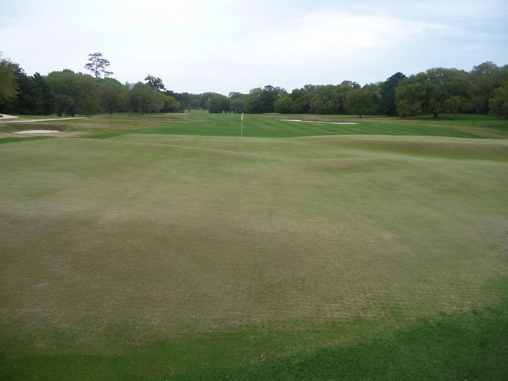 The look from the back of Yeamans Hall's 1st green.