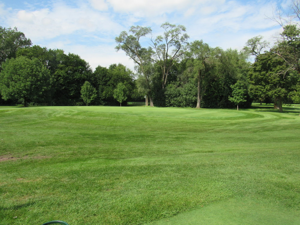 #16 Ravisloe C.C. - Green slope
