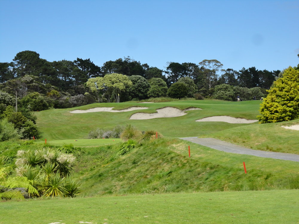 The bunkering at Titrangi Golf Club, MacKenzie's only design in New Zealand. Photo Credit: Chris Day @GolfGuy77
