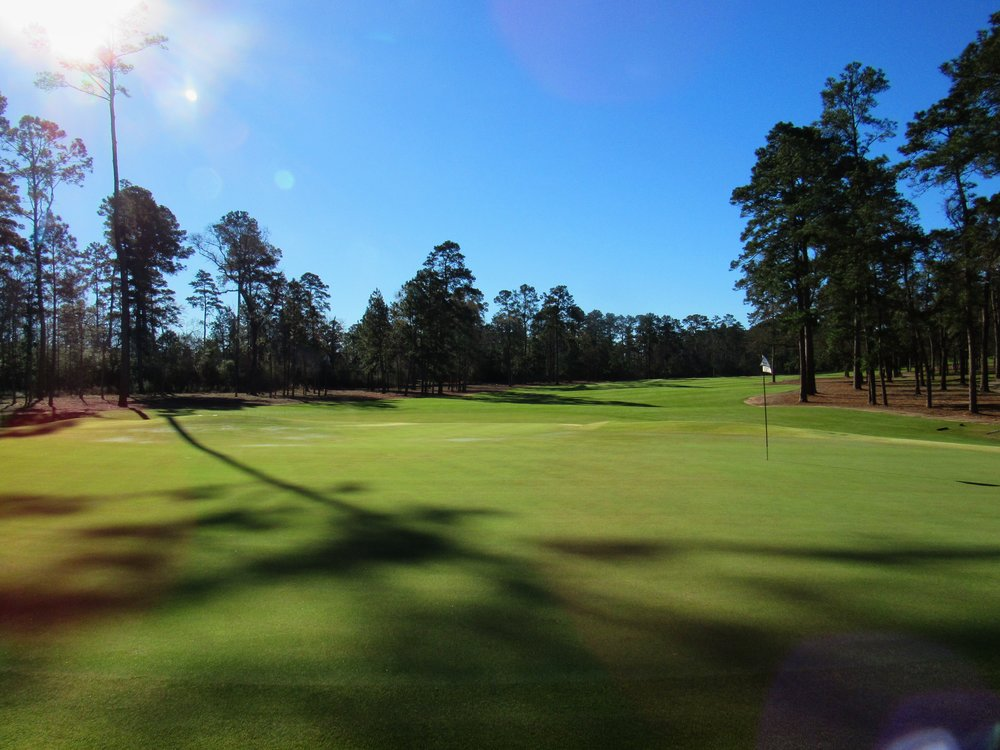 Looking back at Bluejack's par 5 2nd.