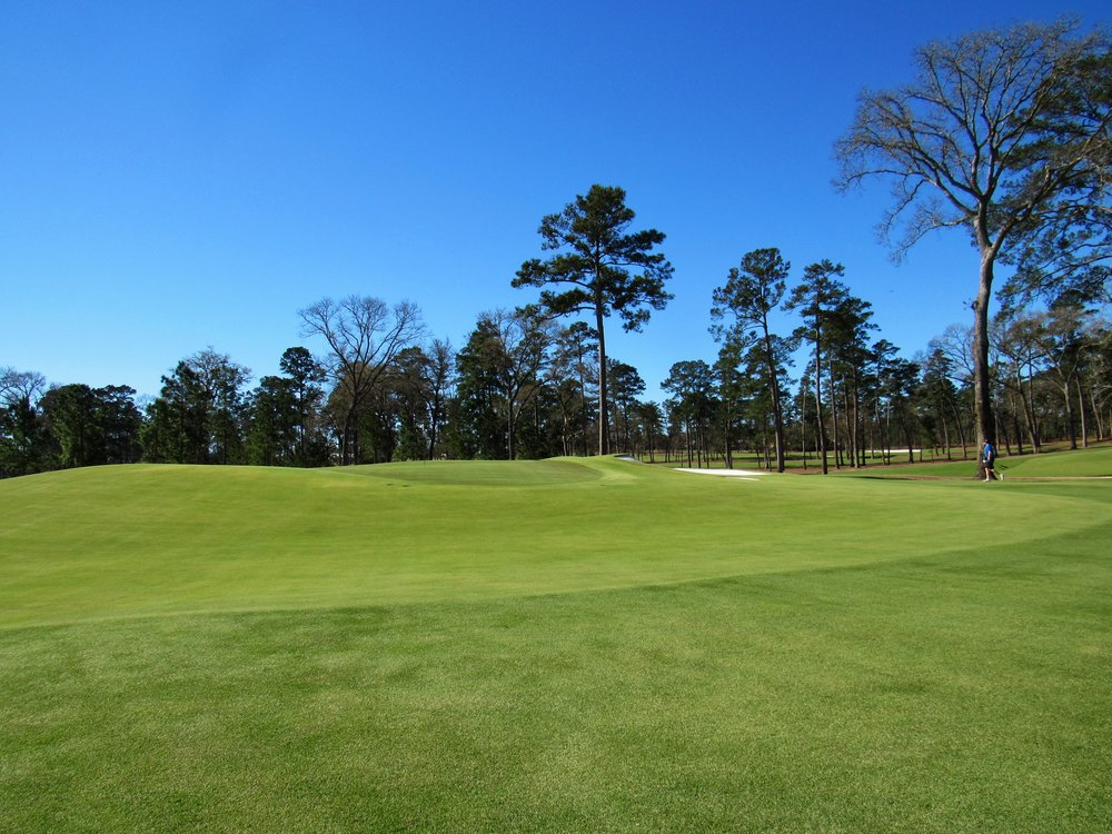 The 6th green from the front left