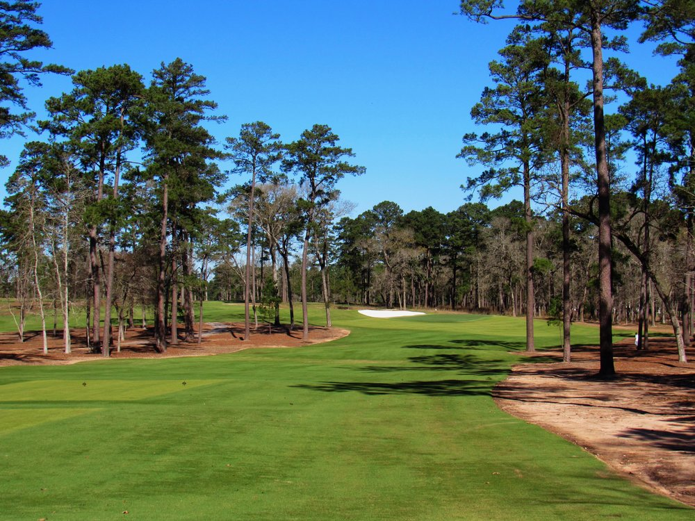 The drivable par 4 8th at Bluejack.