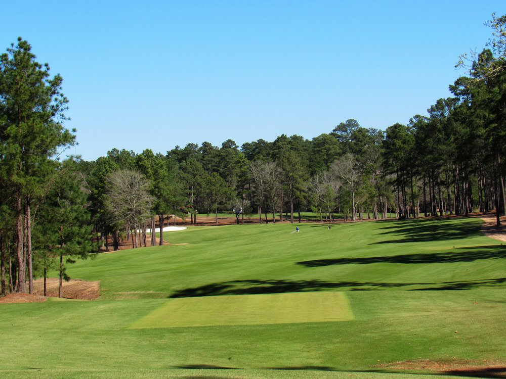 The 11th tee shot at Bluejack
