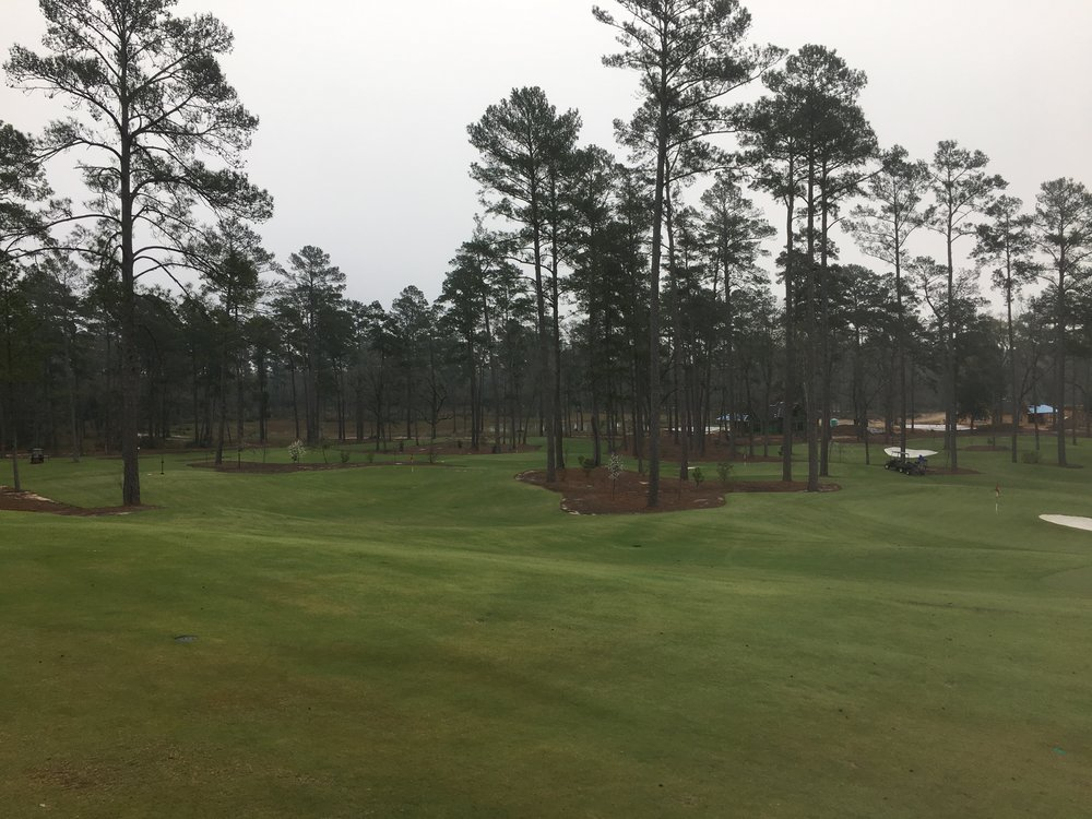 A look at the Playgrounds Bluejack's Short Course