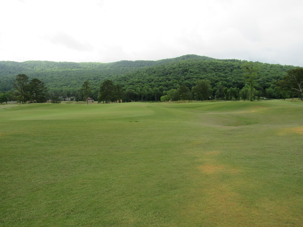 wide view of the 4th green.jpg