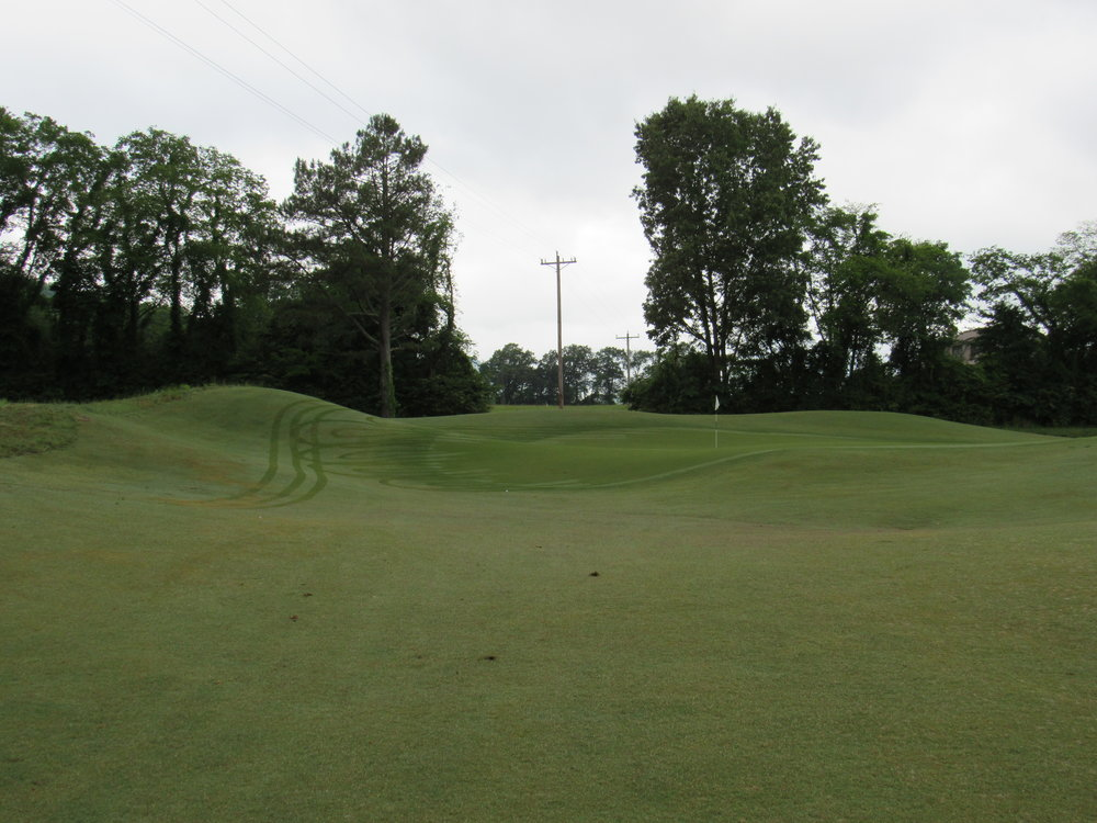 1st green from front.jpg