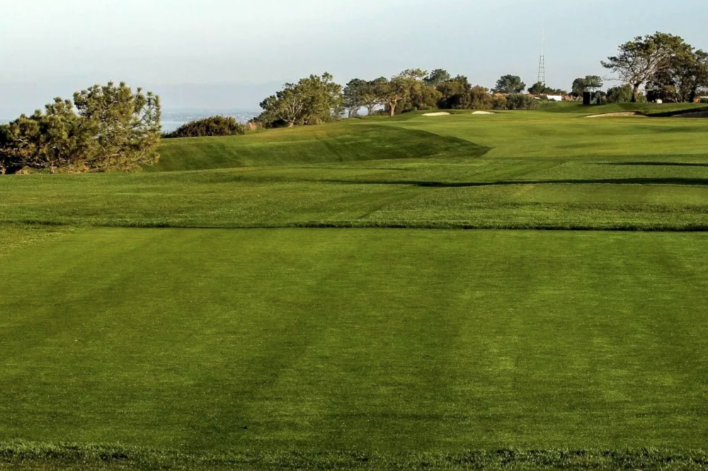 The par 4 4th at Torrey Pines Photo Credit: PGATour.com