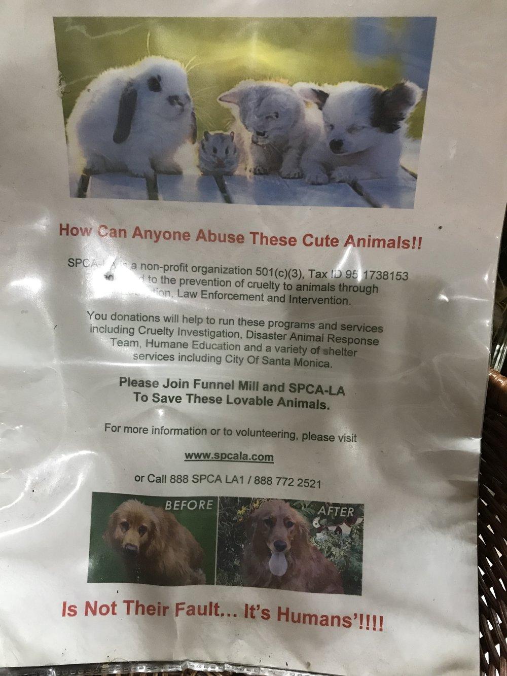 Vietoj įprastai paliekamųarbatpinigių, prašoma aukoti gyvūnų prieglaudai