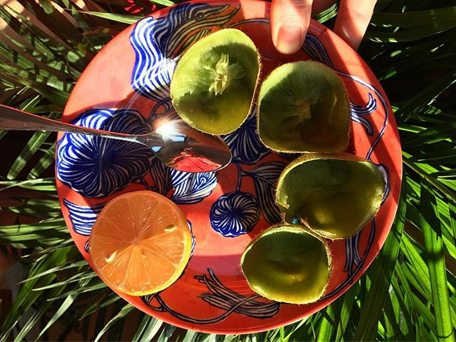 even if it's cold outside, you can bring the warmth of fruits inside. kiwis and lemons to start the week. #alkalizing #gogreen #fruitarian #vegansdoitbetter #vegetariansdoitbetter ☀️