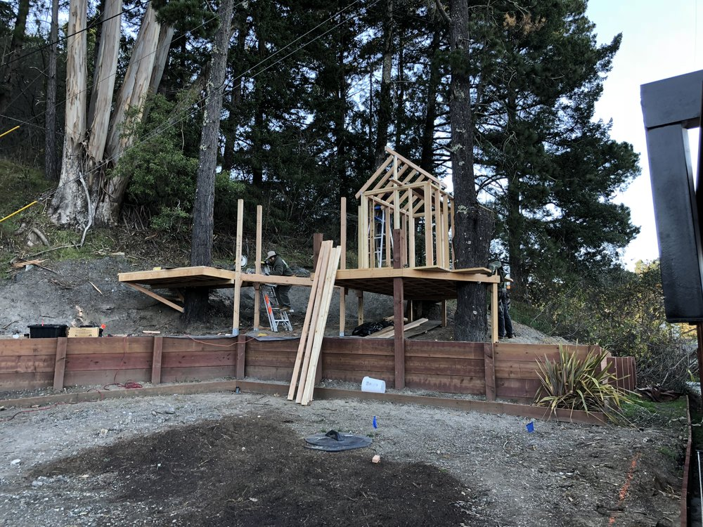 Treehouse in Marin, Mill Valley, Francisco's Gardening and Maintenance - 7 framing and roof.jpeg