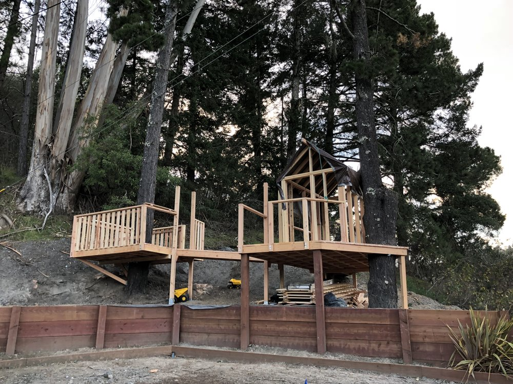 Treehouse in Marin, Mill Valley, Francisco's Gardening and Maintenance - 11 framing and roof shinges.jpeg