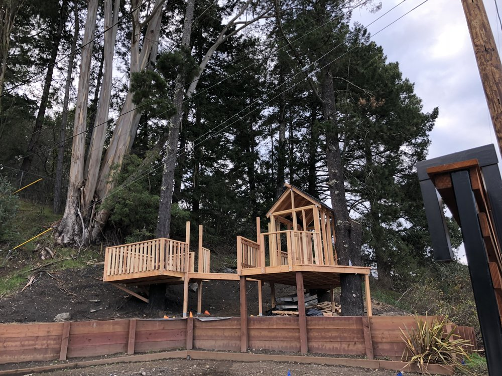 Treehouse in Marin, Mill Valley, Francisco's Gardening and Maintenance - 13 framing and roof shinges 4.jpeg