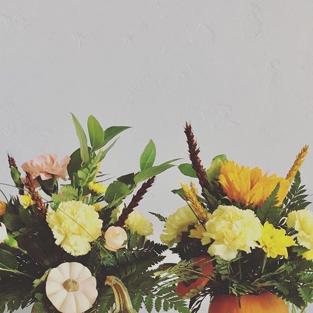 Aloha Autumn! 🌻  #alohaautumn #givemealltheflowers #kauai