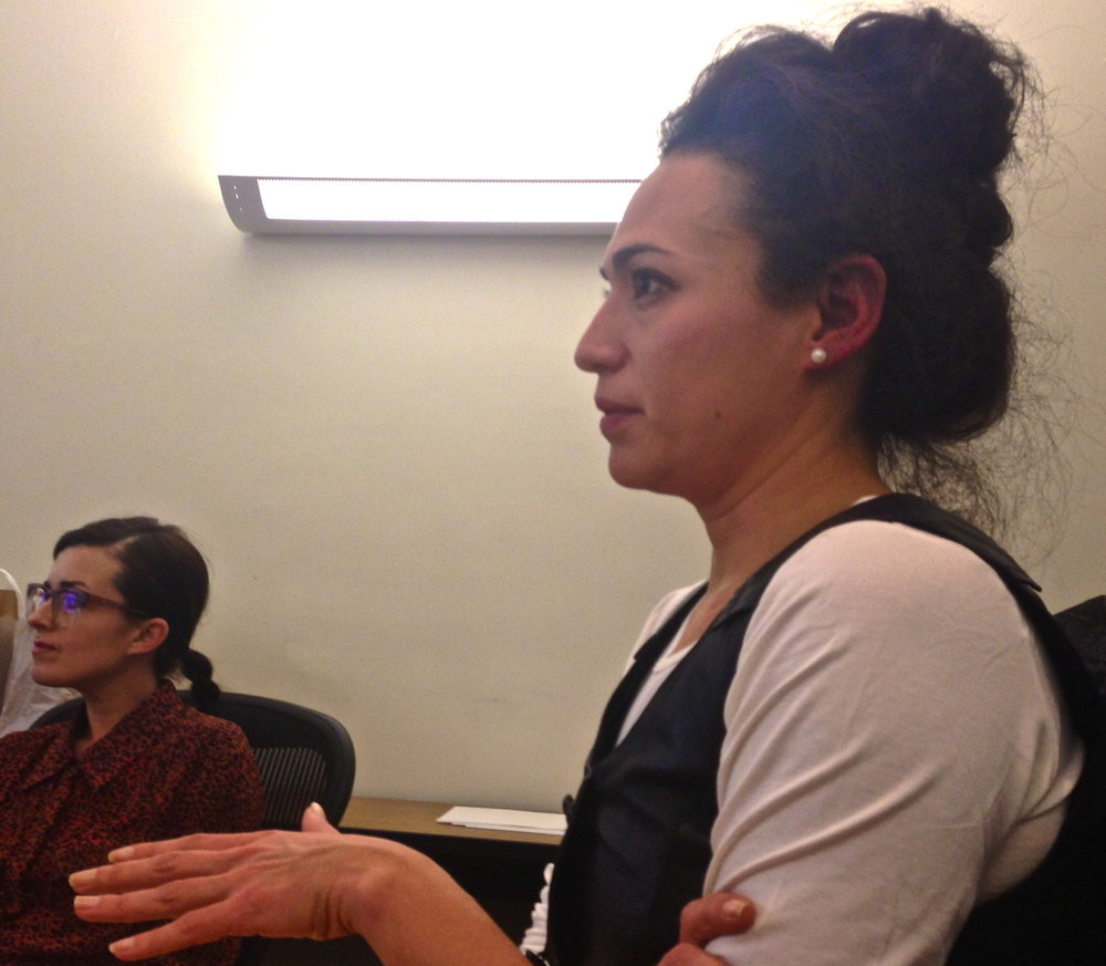 Sofía Hernández Chong Cuy leads a seminar on Latin American artists who employ law as medium (2014).