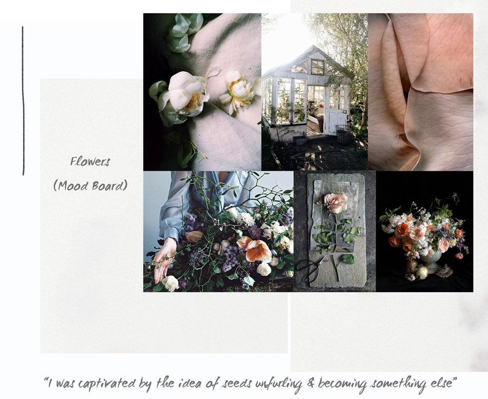 Web flowers.jpg