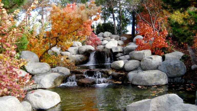 Mindful-Waterfall-768x432.jpeg