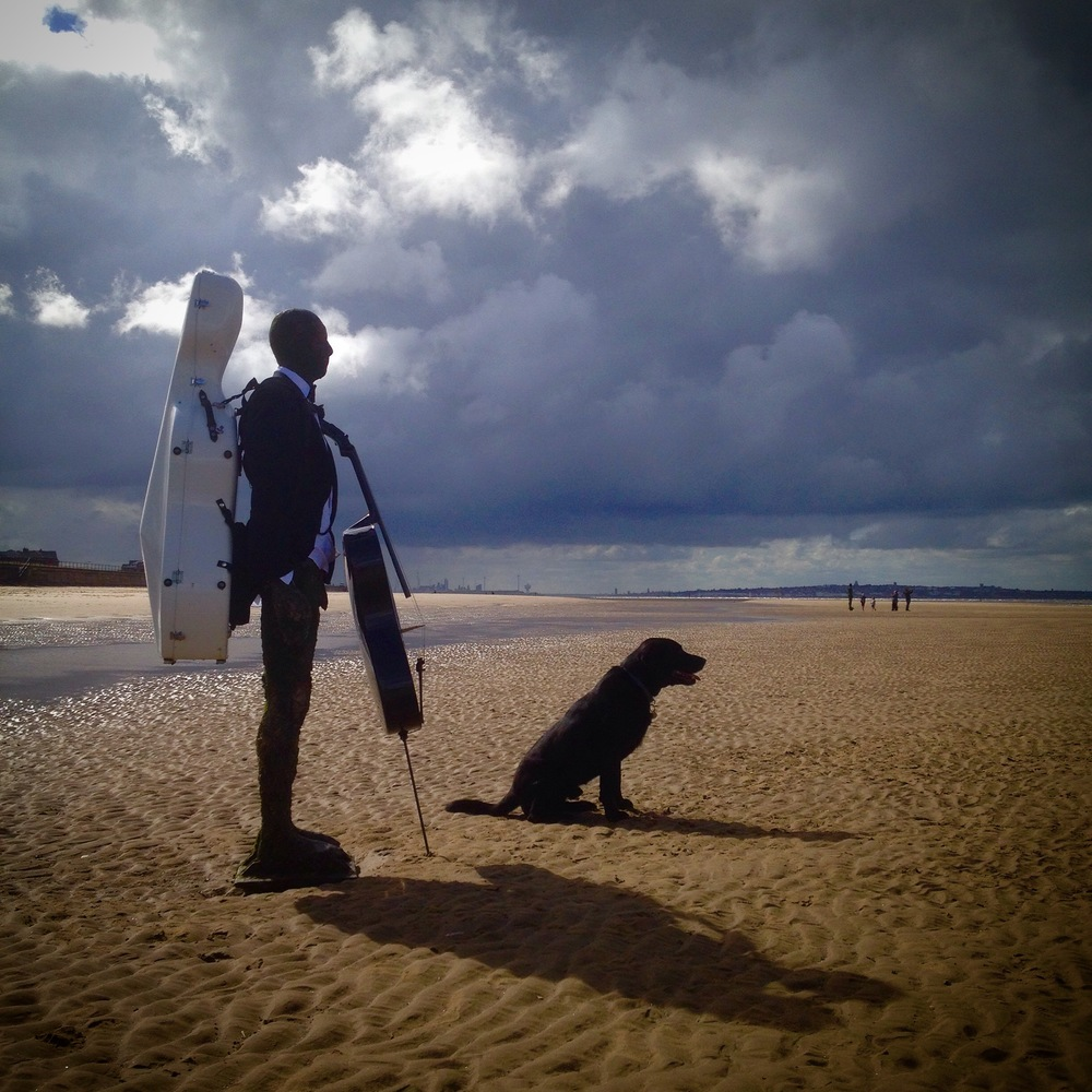 One Man and His Dog Went to Bow a Cello