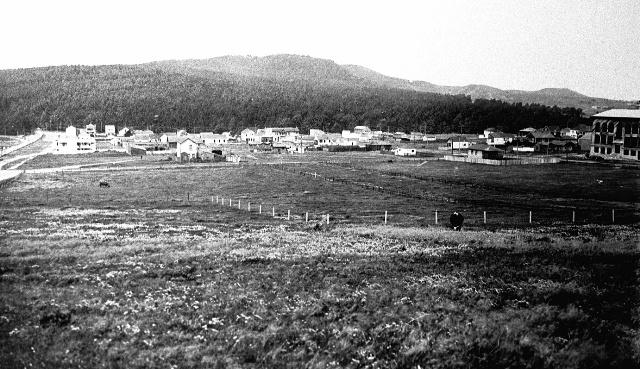 omi_1910.jpg