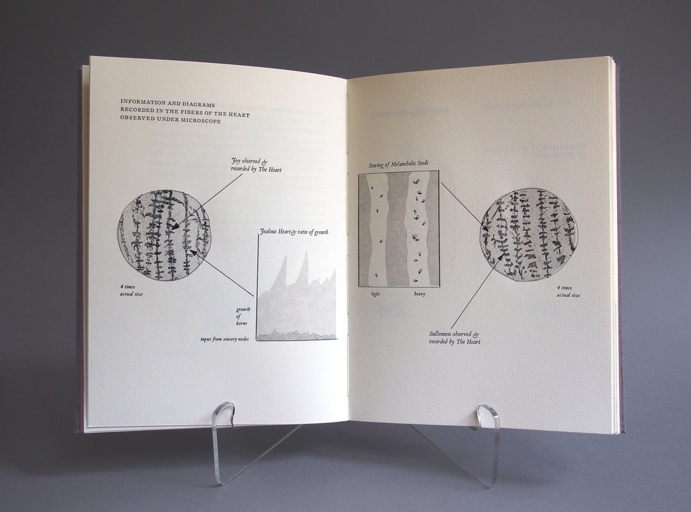 diagrams1.jpg