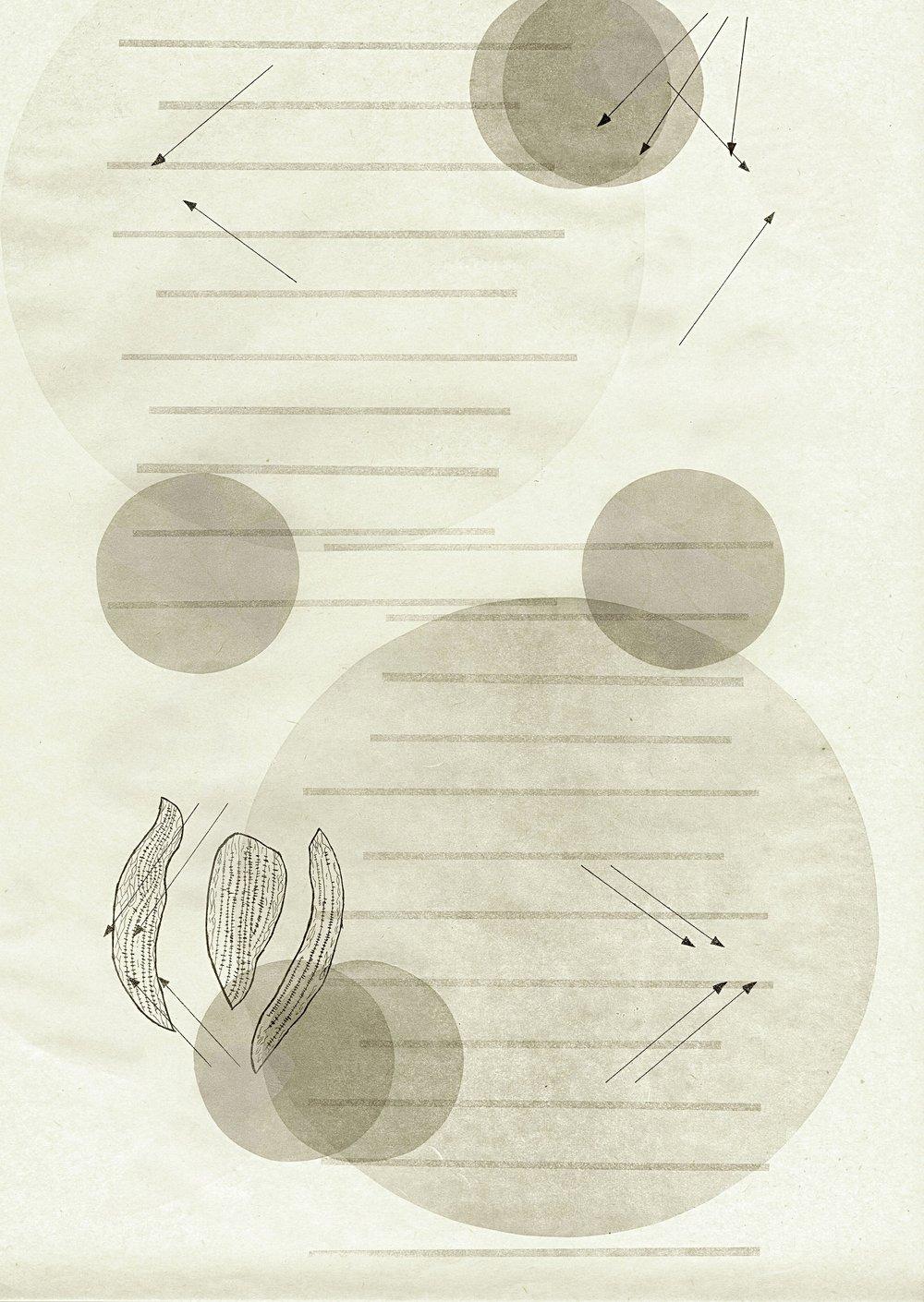 MFA-Collaboration-Print-02.jpg