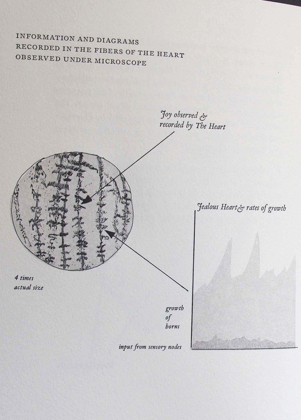 diagramscrop.jpg