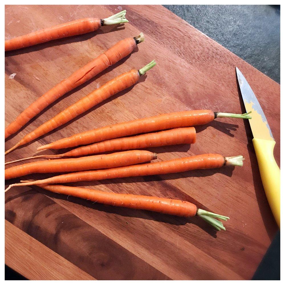 carrot prep.JPG