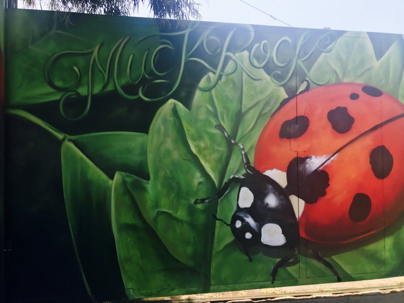 A ladybug lands and magic happens. With much credit and love the beautiful Venice Beach muralist — Jules Muck