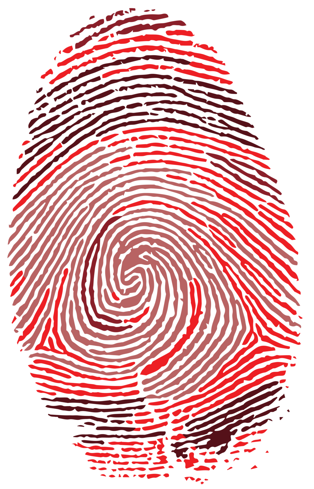 fingerprint-01.png
