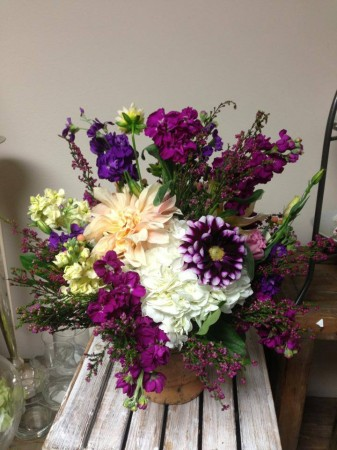 Dahlias and stock
