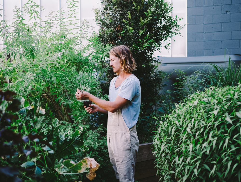 Byron Smith of Urban Growers. Image by Alex Carlyle.