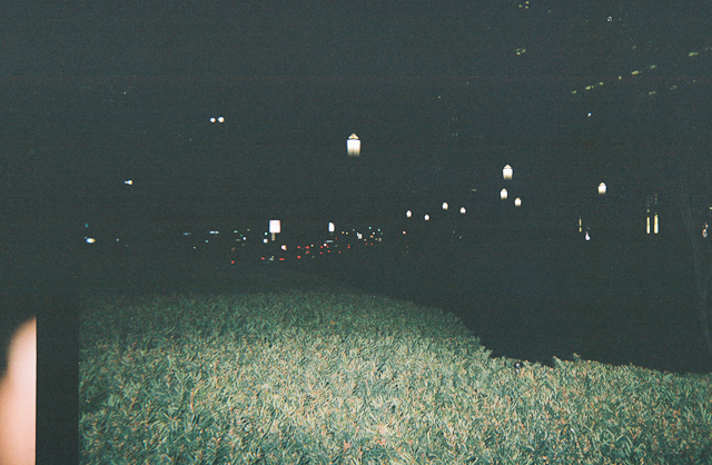Nighttime at the park 2