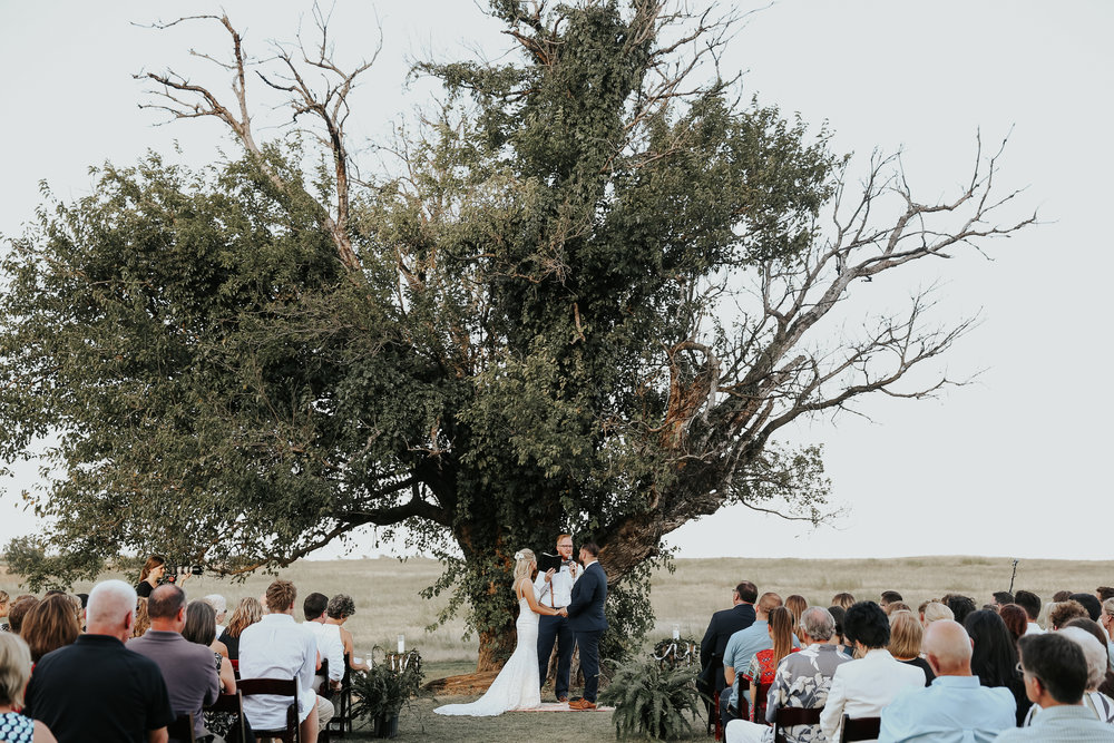 Backyard_Wedding_Oklahoma_MelissaMarshall_21.jpg
