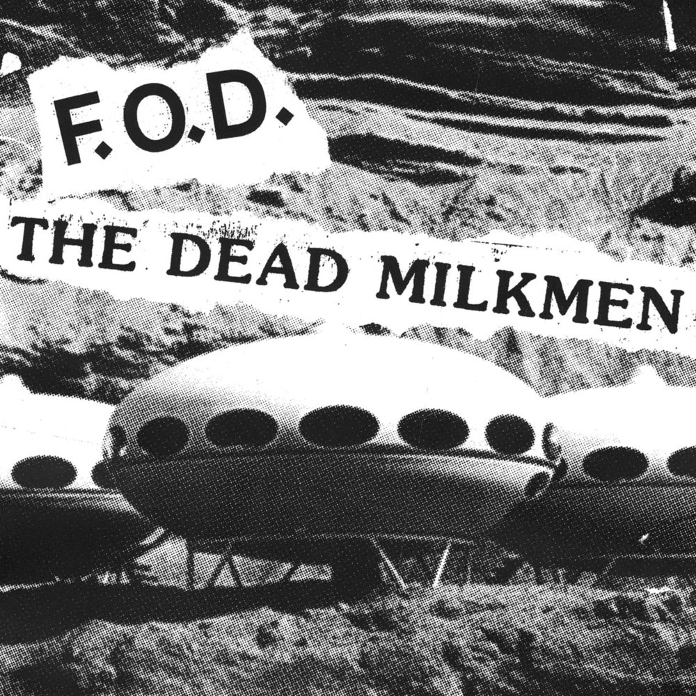 Flag Of Democracy / The Dead Milkmen • Split 7""