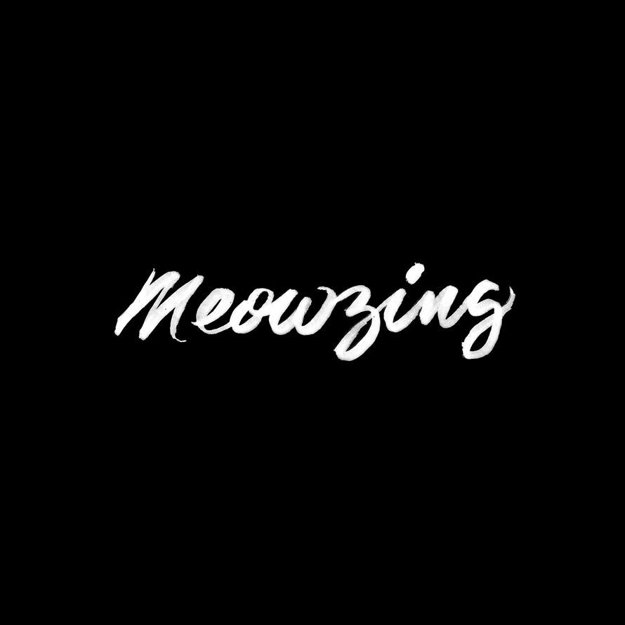 Meowzing_Gallery_3.jpg